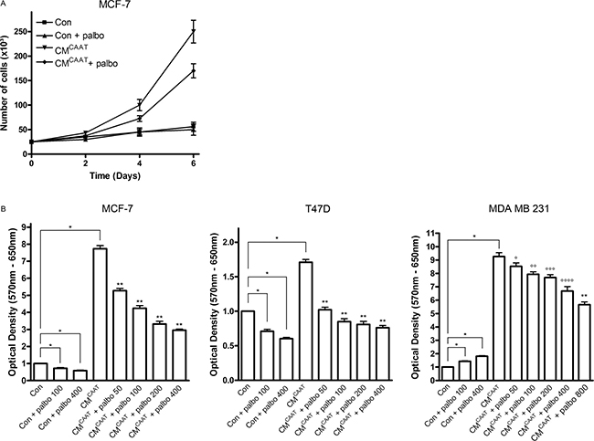 Palbociclib effectively inhibits CAAT enhanced breast cancer cell proliferation.