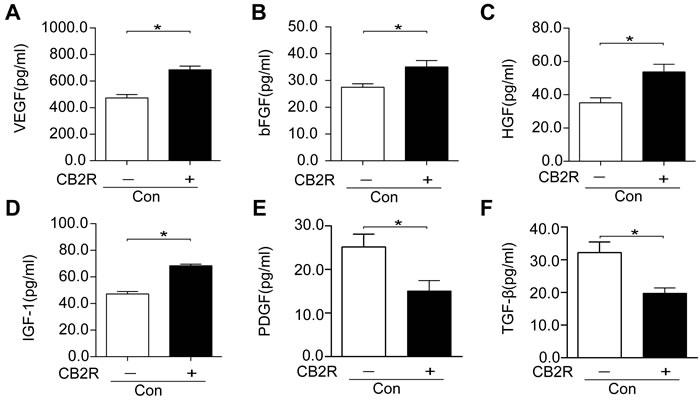 CB2 agonist enhanced the production of paracrine growth factors and inhibited profibrotic cytokines in AD-MSCs.