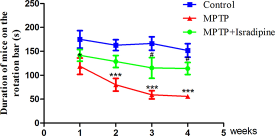 Isradipine prevented against MPTP-induced motor coordination ability impairment.