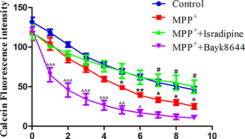 Isradipine inhibited MPP+-induced iron influx in the MES23.5 cells.
