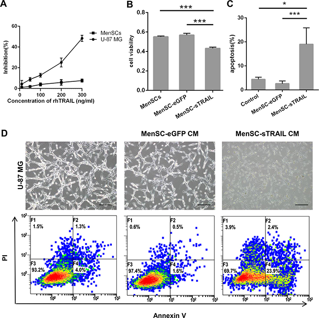 Confirmation that sTRAIL effectively induced tumor cell death.