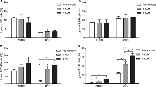 The antisera elicited by 4-KLH vaccine in the presence of adjuvant can kill cancer cells expressing the native STn antigen by ADCC and CDC assays.