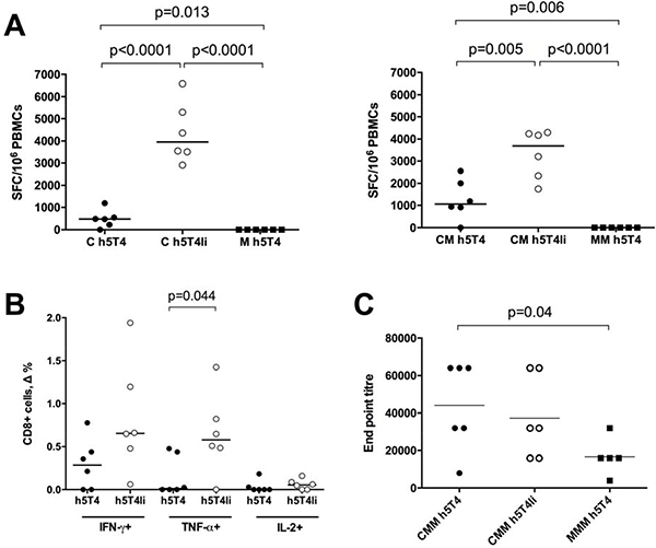 Heterologous ChAdOx1-MVA vaccination regime induces cellular and humoral immune responses against h5T4.