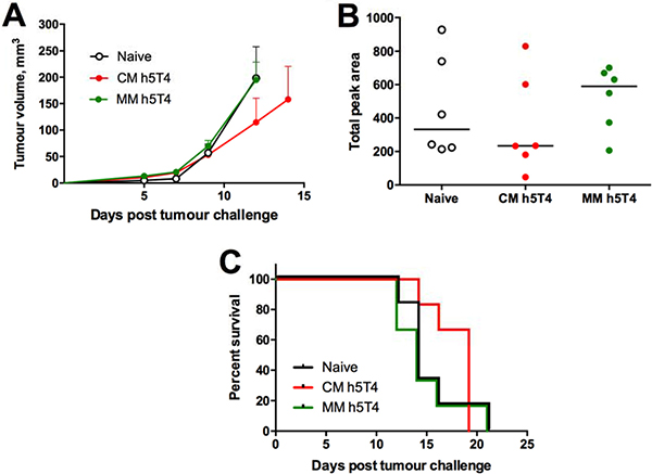 Therapeutic vaccination against h5T4 is modestly protective in B16.h5T4 melanoma tumour model.