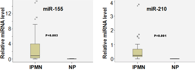 Differential miRNA expression between IPMN and NP samples.