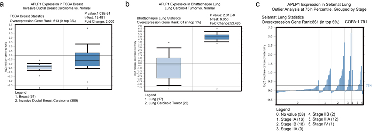 APLP1 is up-regulated in certain types of human cancer, and its higher expression may be correlated with more advanced stages in lung cancer.