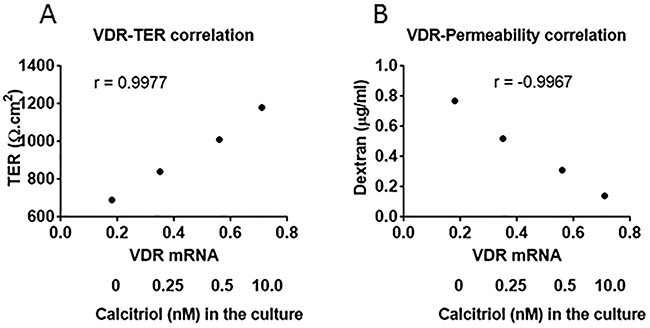 Correlation between VDR mRNA and T84 monolayer barrier function.
