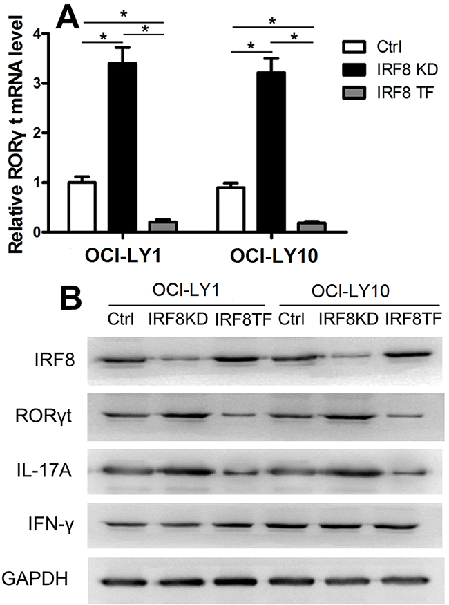 IRF8 suppressed RORγt expression in CD4+T cells.