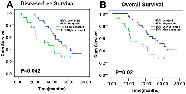 Increased expression of IRF8 in tumor tissues predicted worse DLBCL patient survival.