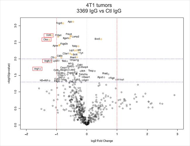 MMP-14 blockade alters the immune microenvironment of 4T1 tumors.