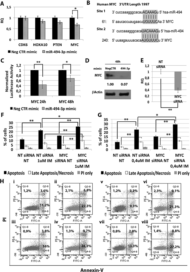 Effects of MYC silencing on K562 cells' response to IM.