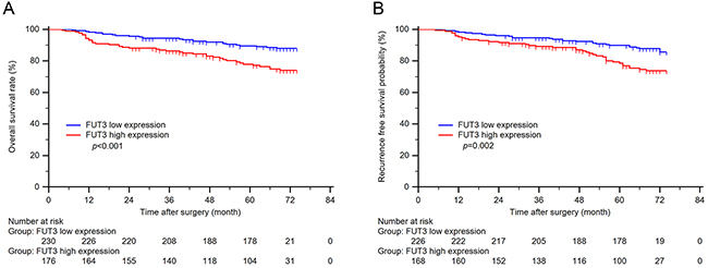 Kaplan-Meier curves of overall survival and recurrence free survival based on tumor FUT3 expression.