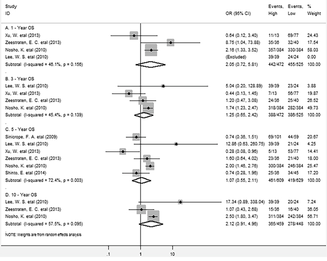 Forest plots describing OR of the association between intraepithelial FoxP3+ Tregs and OS at 1, 3, 5 and 10-year.