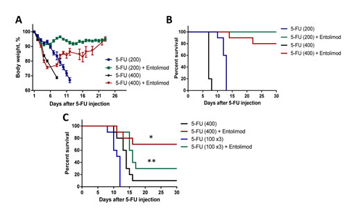 Effect of Entolimod on 5-FU-induced mortality in mice.
