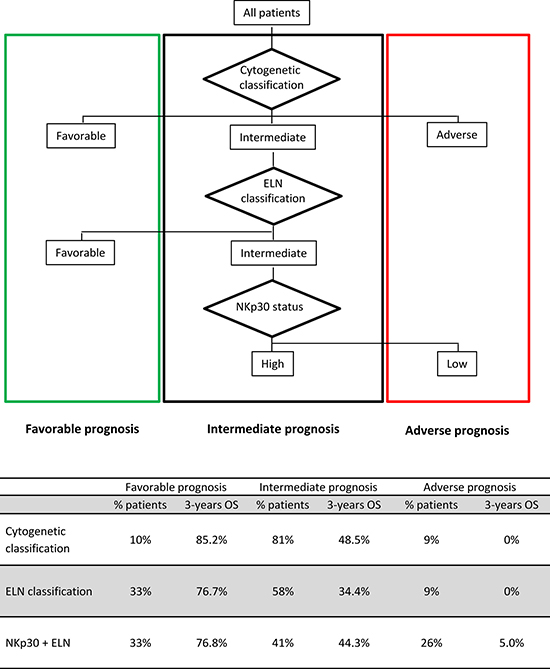 Proposed risk stratification algorithm based on cytogenetic and ELN risk classification refined by NKp30 status.