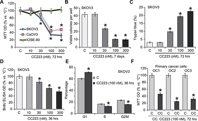 The effect of CC223 to ovarian cancer cell survival and proliferation.