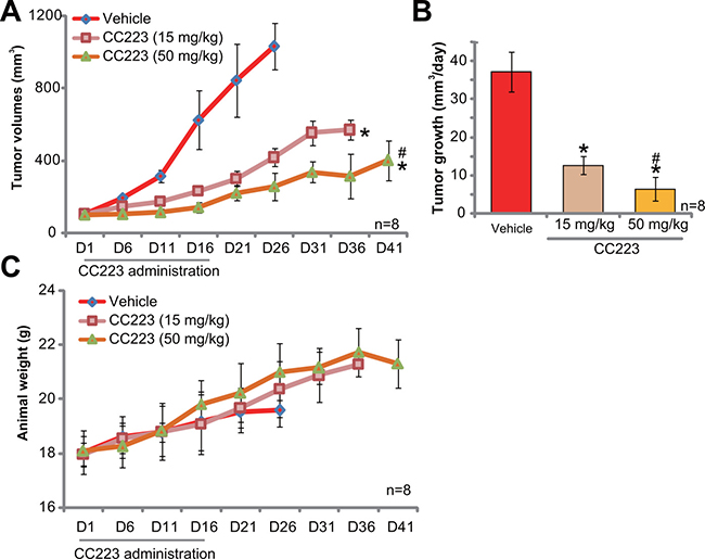 CC223 inhibits SKOV3 tumor growth in nude mice.