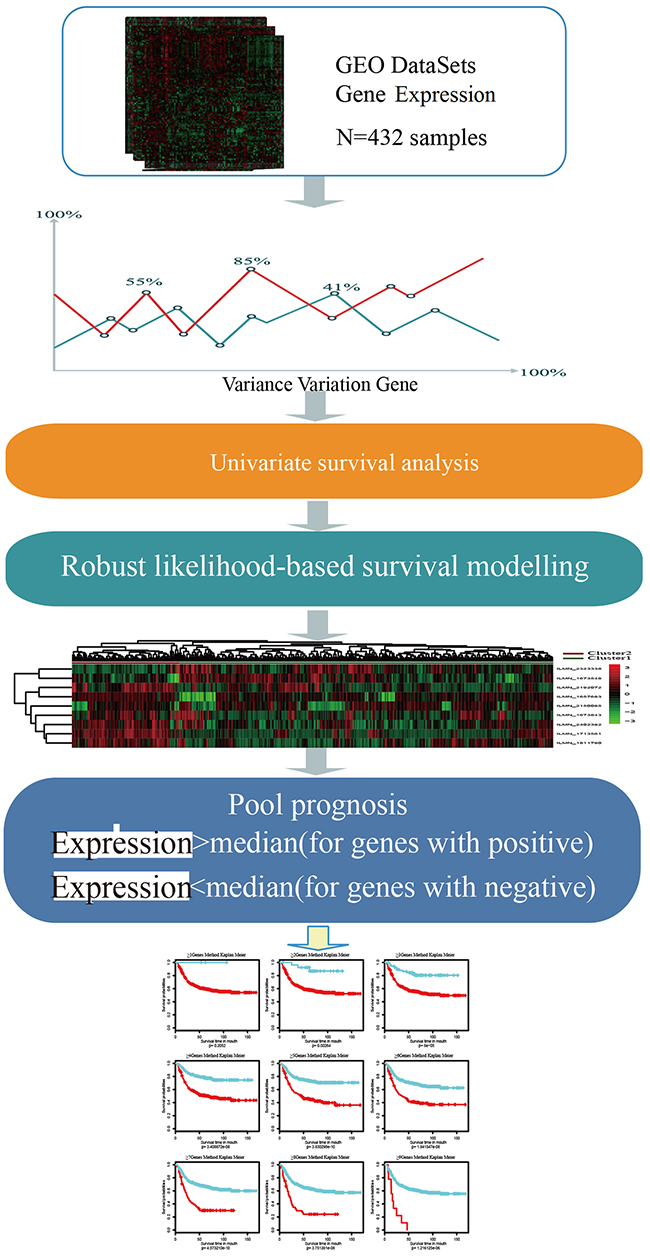 Oncotarget Identification And Validation Of A Prognostic 9 Genes Circuit Diagram Positive Negative Schematic For Multi Step Strategy To Identify Gene Signature Prognosis In Gastric