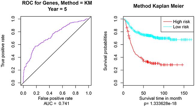 Multivariate survival analysis of 9-gene feature.