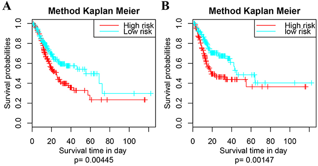 Survival analysis of the extra dataset following the 9-5Gene model.