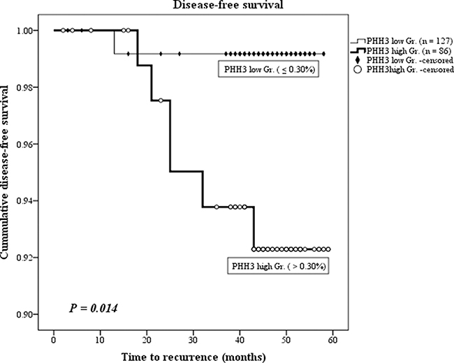 Disease-free survival shown by Kaplan–Meier curve.