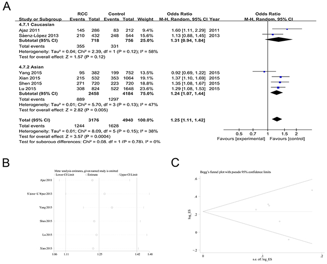 The association of rs699947 polymorphism with RCC susceptibility in the A allele vs. C allele model.