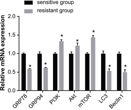 Comparison of the mRNA expression of GRP78, GRP94, PI3K, Akt, mTOR, LC3 and Beclin1 between the sensitive and resistant groups.