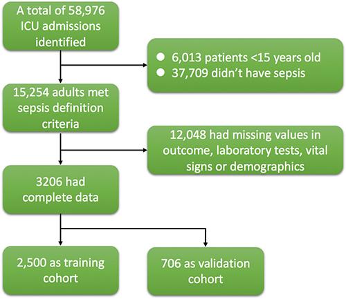 Flowchart of patient selection.