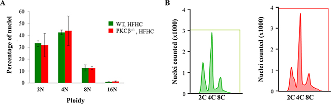 PKCβ deficiency does not increase ploidy in hepatocytes.