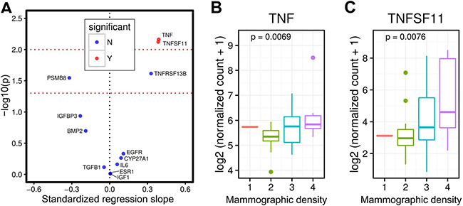 Breast tissue TNFSF11 (RANKL) and TNF gene expression and mammographic density in premenopausal women.