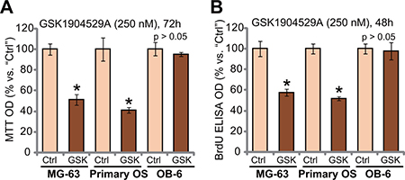 GSK1904529A is anti-proliferative to MG-63 cells and primary human OS cells.