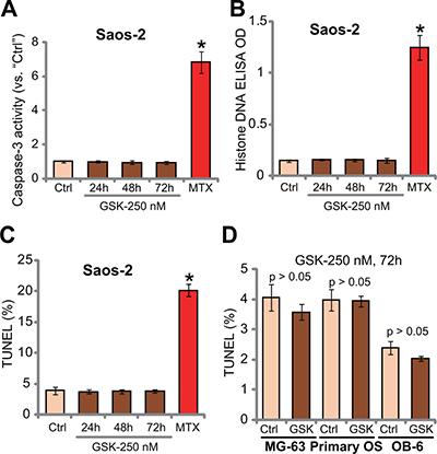 GSK1904529A fails to induce OS cell apoptosis.