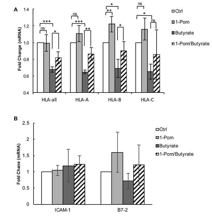 Effect of Pom on MHC-I (HLA-A, B and C), ICAM and B7-2 mRNA gene expression in BCBL-1 cells induced with butyrate.