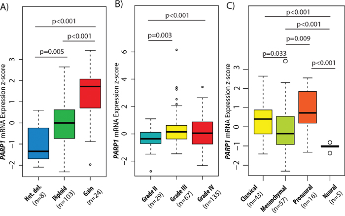 PARP1 copy number and expression levels in GBM subtypes and glioma WHO grades.