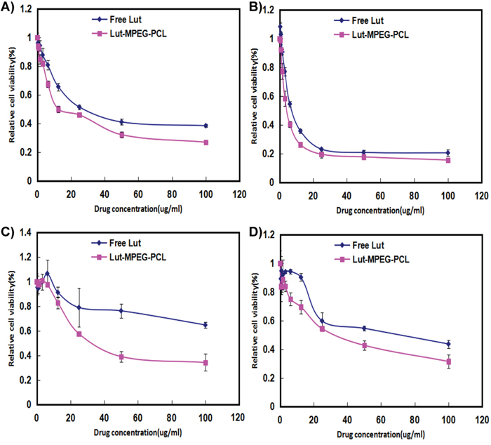Cell viability detection with MTT methods.