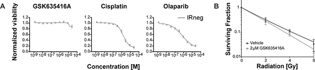 The effect of GSK635416A on normal BJ-ET fibroblast cells.