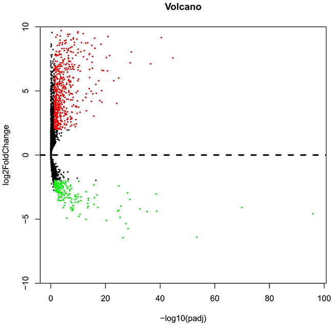 Volcano plot of the aberrantly expressed lncRNAs between LUSC and para-tumorous lung tissues.