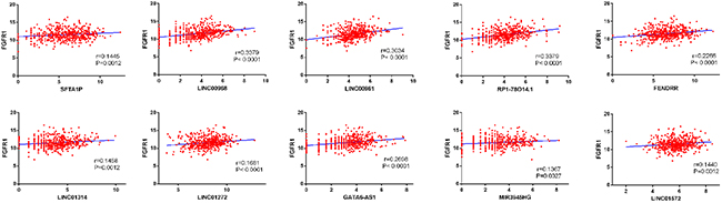 Correlation between FGFR1 expression and lncRNAs in LUSC.