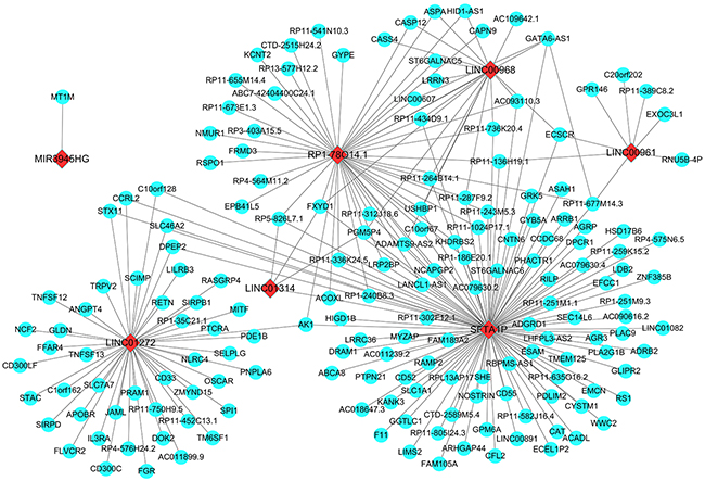 Prospective gene networks of the 10 top differentially expressed lncRNAs.