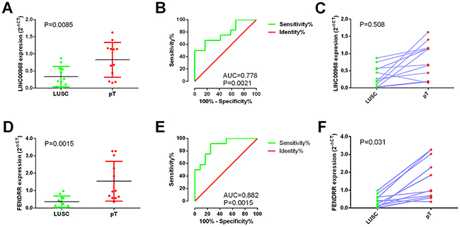 Validation of LINC00968 and FENDRR based on 12 paired clinical samples of LUSC.