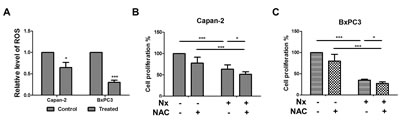 Nx reduces intracellular ROS generation.