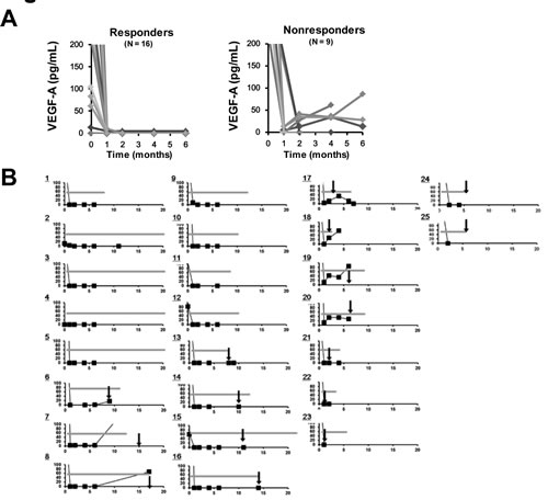 Analysis of changes in the serum concentration of VEGF-A.