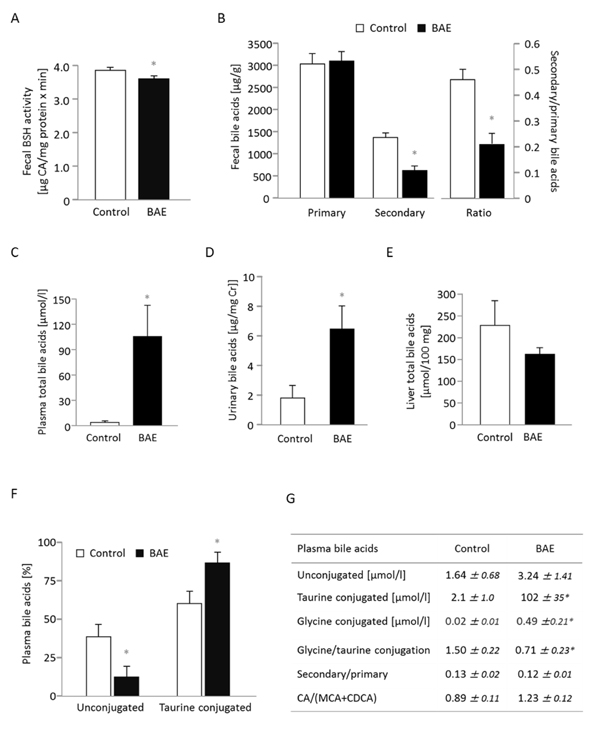 Dietary supplementation of a high fat diet with a brown algae extract (BAE) alters microbial metabolism of bile acids and elevates the concentration of bile acids in systemic circulation of mice.