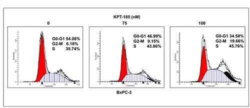 Figure 4:KPT-185 induces cell cycle arrest at G2-M phase.