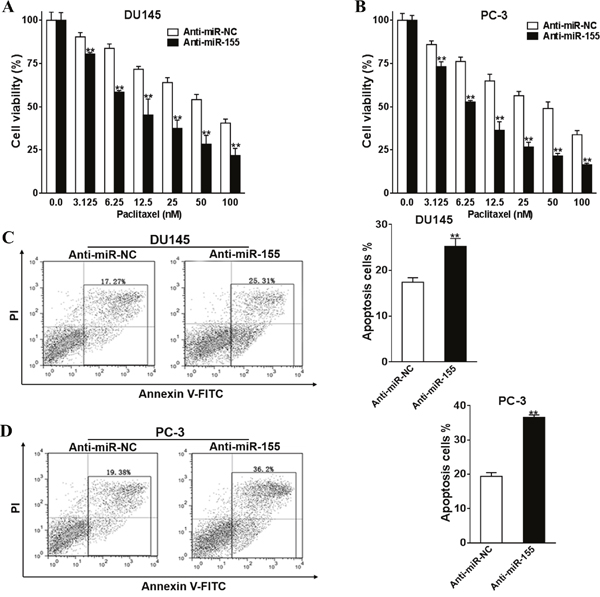 Silence of miR-155 promotes prostate cancer cells chemosensitivity to paclitaxel.