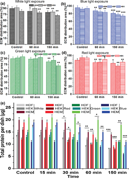 The relative distribution of ECM production by human different skin cells upon light exposure.