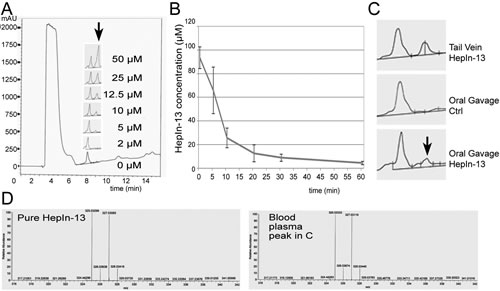 Pharmacokinetics and oral bioavailability of the Hepsin inhibitor HepIn-13.