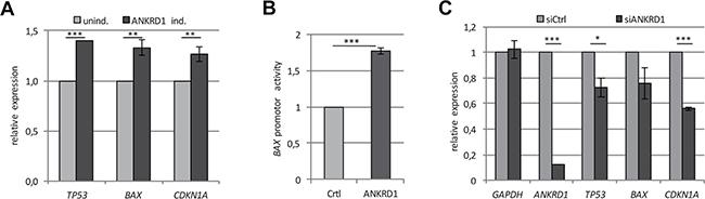 ANKRD1 regulates the expression of tumor suppressor genes.