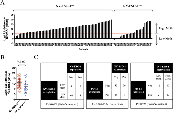 NY-ESO-1 promoter methylation correlated with NY-ESO-1 protein expression in lung cancer patient samples.
