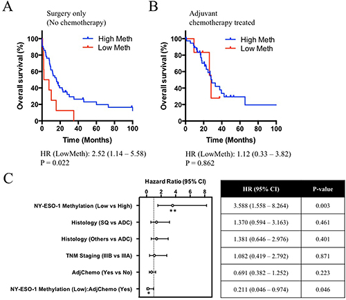 Clinical correlations of NY-ESO-1 promoter methylation and overall survival in patients underwent surgery alone or surgery and adjuvant chemotherapy.